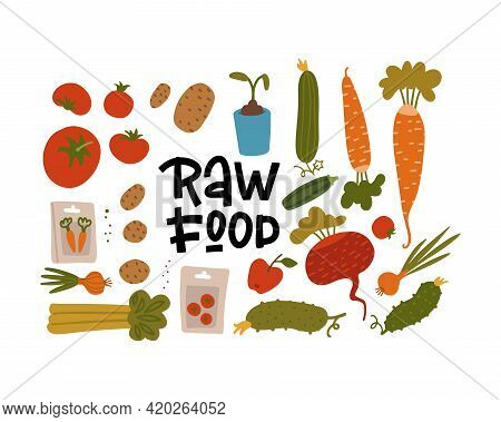 Agriculture Elements Set, Different Cultivated Plants, Wholesome Organic Food With Seeds And Sprouts
