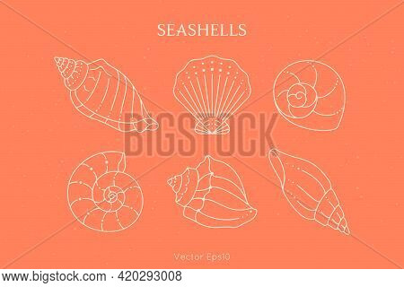 Set Of Seashells Icons In A Trendy Minimal Linear Style. Vector Illustration Of A Conch, Snail, Scal