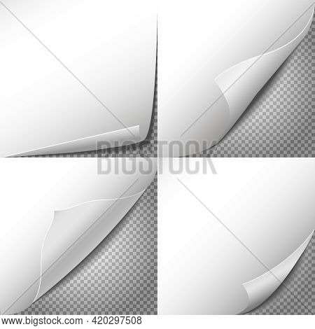 Curl Paper Corners Vector Set With Checkered Transparent Background. Sheet Sticker, Message Blank La
