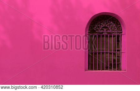Hot Pink Wrought Iron Vintage Window On French Rose Pink Colored Wall With The Foliage Shadows