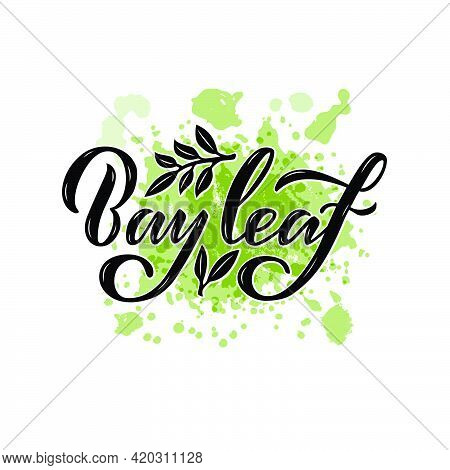 Vector Illustration Of Bay Leaf Lettering For Packages, Product Design, Banners, Stickers, Spice Sho