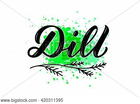 Vector Illustration Of Dill Lettering For Packages, Product Design, Banner, Sticker, Spice Shop Pric