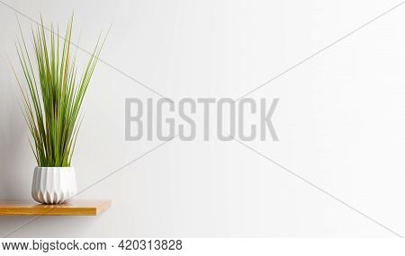 Interior Design Of Living Room With Wooden Shelf.  Wall Decor With Green Grass In Plant Pot. White W