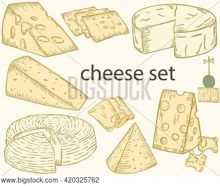 Cheese Sketch. Vector Set Of Different Cheeses. Dairy Products, Processing Industry. Head Of Cheese