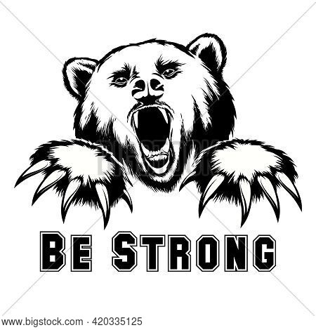 Vector Angry Bear Head. Angry Grizzly, Powerful Predator, Strength And Wildlife, Claw And Mammal