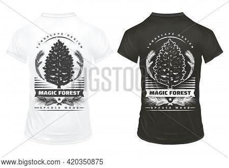 Vintage Coniferous Tree Prints Template With Inscriptions Fir Tree Branches Cones On Black And White