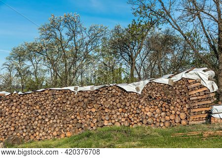 Finely Stacked Logs Stored In The Open Air As Firewood. Stack Of Firewoods. Wood Stacked And Prepare