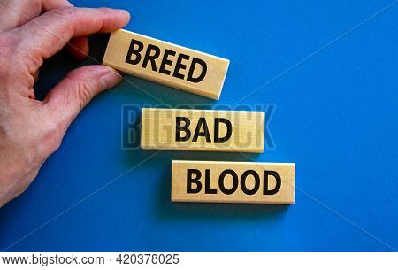 Breed Bad Blood Symbol. Businessman Holds Wooden Block With Words 'breed Bad Blood'. Beautiful Blue