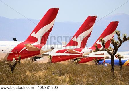 May 12, 2021 In Victorville, Ca:  Jumbo Jet Airliner Aircraft In Storage Surrounded By Joshua Trees