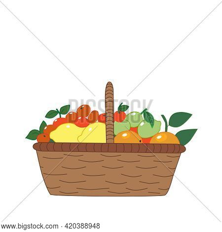 A Large Basket With Colorful Fruits, Citrus Fruits: Oranges, Tangerines, Limes, Lemons. Isolated On