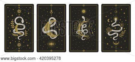 Magical Snakes Tarot Cards. Occult Hand Drawn Tarot Cards, Esoteric Spiritual Snakes Wisdom Symbol C