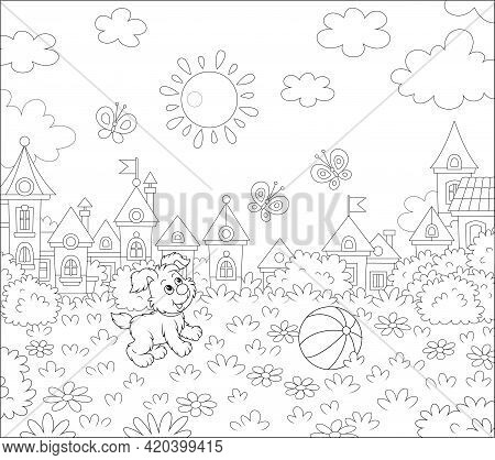 Happy Little Puppy Playing With Merry Butterflies On Grass Of A Sunny Summer Park In A Pretty Small