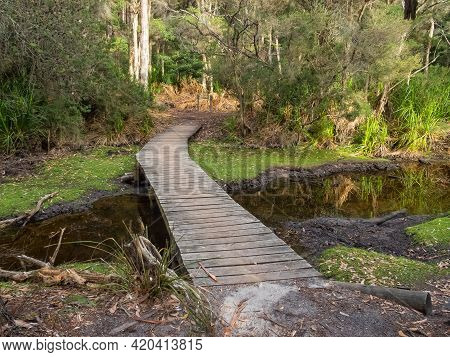 Wooden Footbridge Over Cove Creek At The Refuge Cove Campsite - Wilsons Promontory, Victoria, Austra