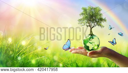 Tree On Planet - Environment Concept - Hand Holding Green Globe With Butterflies And Rainbow