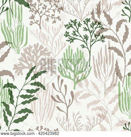 Coral Reef Seamless Pattern. Kelp Laminaria Seaweed Algae Background. Australian Staghorn And Pillar