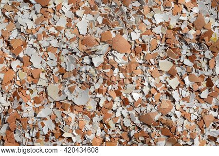 Crushed Eggshell For Use In Making Fertilizers, Eggshells Are An Excellent Way To Introduce This Min