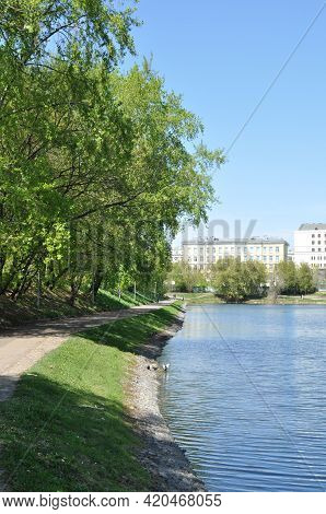 View Of The Pond Embankment And Trees. Spring Panorama Of A City Park With A Pond.