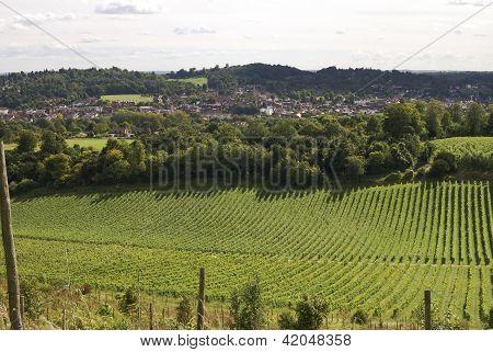 Blick über Dorking. Surrey. England