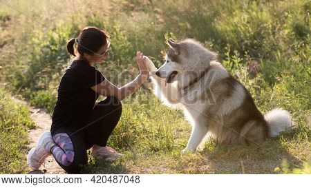 Beautiful girl wearing sport style with husky dog outdoors. Cute furry doggy high five with his paw to owner. Friendship between pet and human