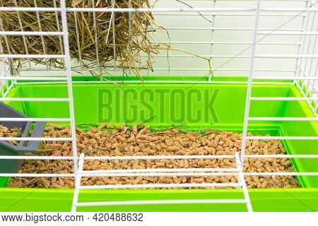 Close-up Cage For Pets With A Green Tray For Shavings, Sawdust, Feed, Hay And Hay. Keeping Pets In C