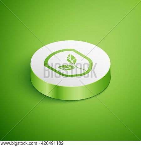 Isometric Shield With Leaf Icon Isolated On Green Background. Eco-friendly Security Shield With Leaf