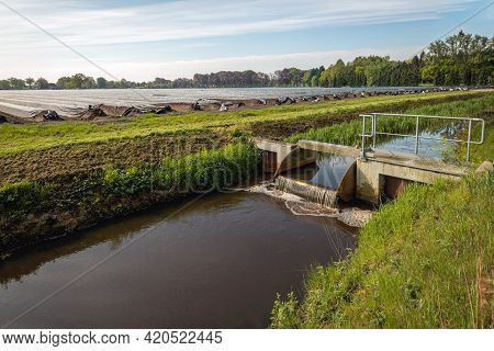 Small Metal Weir In A Dutch Ditch Regulates The Water Level Around A Field With Asparagus Beds Cover