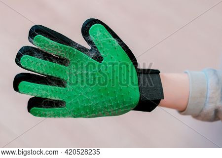 Green And Black Rubber Glove With Spikes And Cat's Wool. Cleaning Pets. Animals. Useful. Thorn