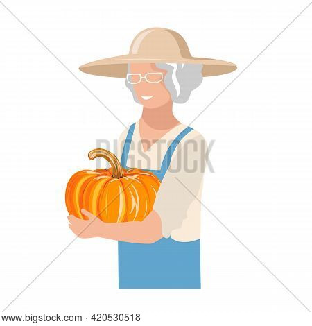 An Elderly Woman In Work Clothes And A Sun Hat Harvests A Pumpkin. Autumn Harvest Vector Illustratio