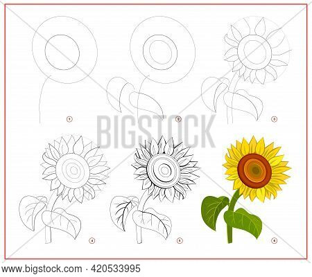 Page Shows How To Learn To Draw Step By Step Beautiful Sunflower. Developing Children Skills For Dra