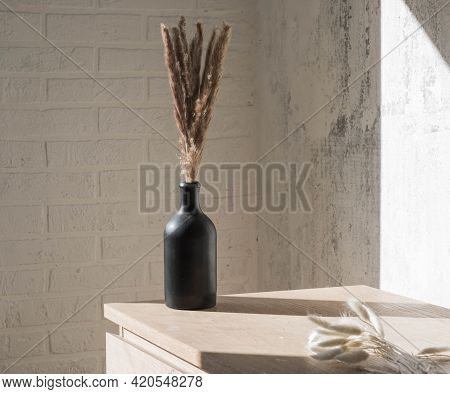 Vase With Dried Flowers On A Neutral Background Casting Shadows On The Wall. Dry Pampas Grass, Reed