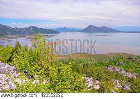 View Of Coast Of Lake Skadar  In Spring. National Park Lake Skadar, Montenegro