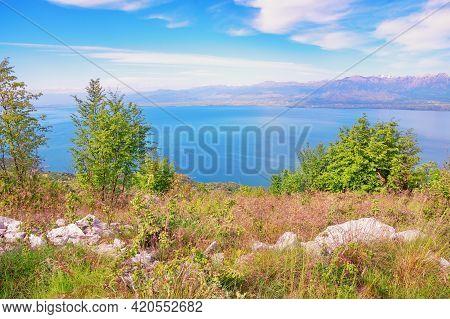 Montenegro. National Park Lake Skadar  On Sunny Spring Day. View Of Coast Of Lake Skadar