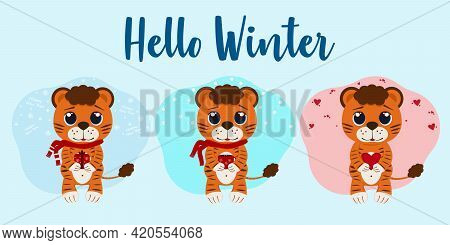 Concept Hello Winter 2022. Vector Illustration Of Lion Cubs From Winter Months