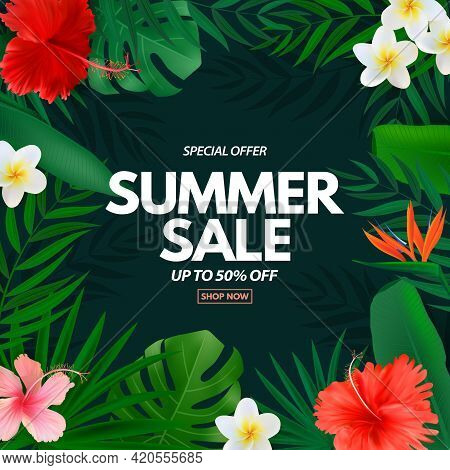 Summer Sale Poster. Natural Background With Tropical Palm Leaves, Exotic Plumeria And Hibiscus Flowe