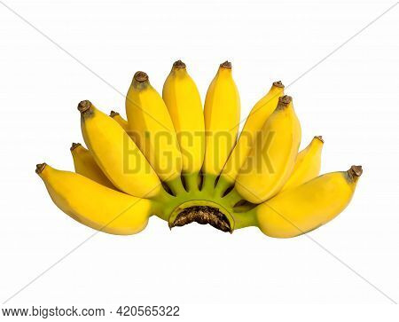 A Bunch Of Yellow  Banana Ripe Fruit Isolated On White Background And Clipping Path