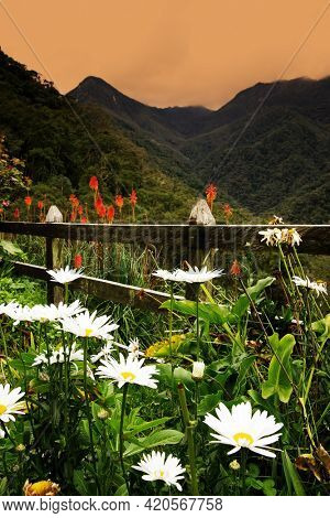 Scenic alpine landscape of Cordiliera Central, Salento, Colombia, South America