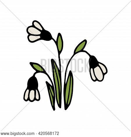 Hand Drawn Colorful Floral Element Isolated On A White Background. The Flowers Of Snowdrops. Doodle,