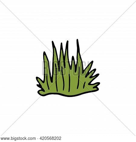 Single Hand Drawn Herbal Element On A White Isolated Background. Doodle, Illustration Simple Outline