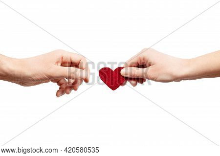 Female Hand Gives A Male Heart. Give Love, A Pair Of Lovers. Organ Donor.
