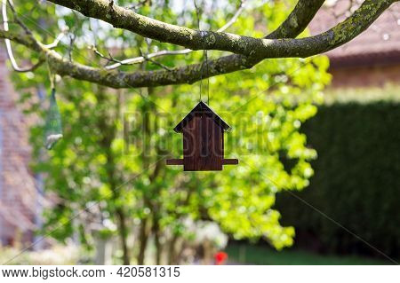 A Closeup Portrait Of A Wooden Bird Feeder House Hanging Below A Walnut Tree On A Sunny Day. The Sma