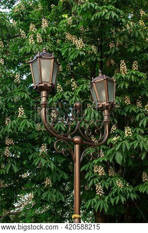 City Lantern In The City Park. City Lantern On A Green Tree Background. Detail Of Urban Architecture