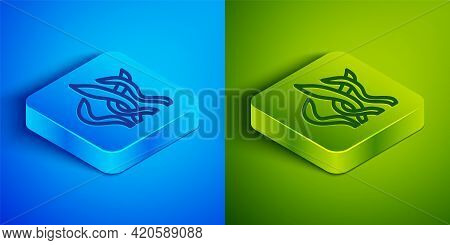 Isometric Line Seaweed Icon Isolated On Blue And Green Background. Underwater Seaweed Spirulina, Aqu