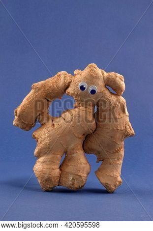 Ginger giant monster root rhizome strong vitamin food with googly eyes funny conceptual photo