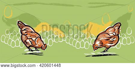 Chickens Peck At The Grass. Illustration Of The Banner Sketch By Hand, Color For Your Own .