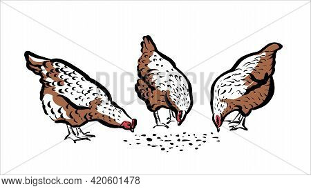 Chickens Peck At The Grass. Illustration Of A Stylish Sketch By Hand, In Two Colors.