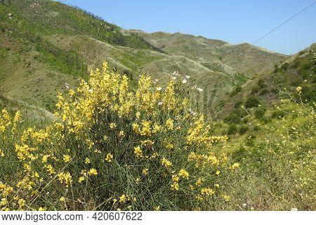 Scenic Wilderness Of The Santa Monica Mountains, In Ventura County, California.
