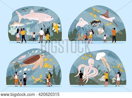 Flat 2x2 Set Of Compositions With Oceanarium Visitors Watching Octopus Shark Tortoise Fish Jellyfish