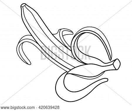 Banana Open With Peel. Ripe Peeled Banana - Tropical Fruit - Vector Linear Illustration For Coloring