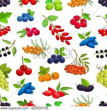 Berries Seamless Pattern. Cartoon Vector Sea Buckthorn, Black Chokeberry And Cherry, Hawthorn, Bilbe