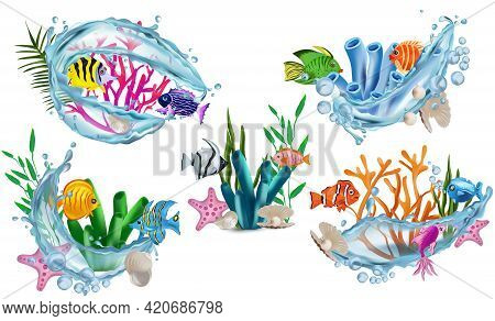 Funny Tropicals Colorful Fish, Seaweed, Corals, Starfish, Shell With Pearl, Shell, Water Splash. Und